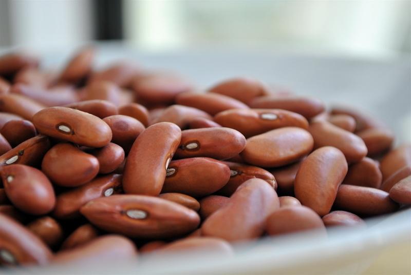 A medida valerá para o feijão com origem na Argentina, no Paraguai e na Bolívia