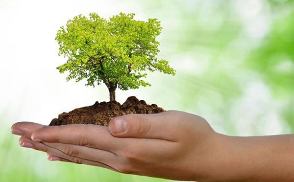 Ações educativas têm por objetivo destacar a importância de práticas benéficas para a preservação ambiental e a conscientização da população
