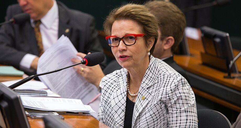 Deputada Tereza Cristina (PSB/MS)