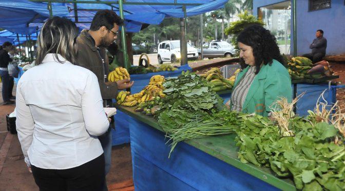 Tradicional entre as pessoas que buscam meios alternativos de alimentação, a feira foi criada para incentivar o consumo de alimentos saudáveis entre a população urbana