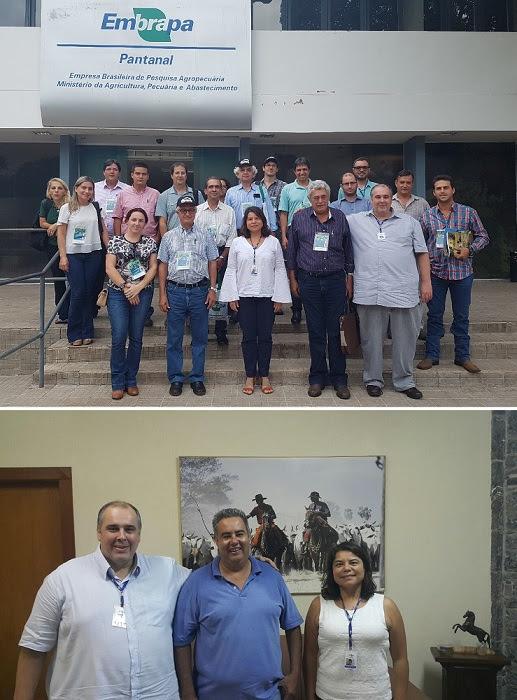 Instituições debatem parcerias em benefício da região do Pantanal
