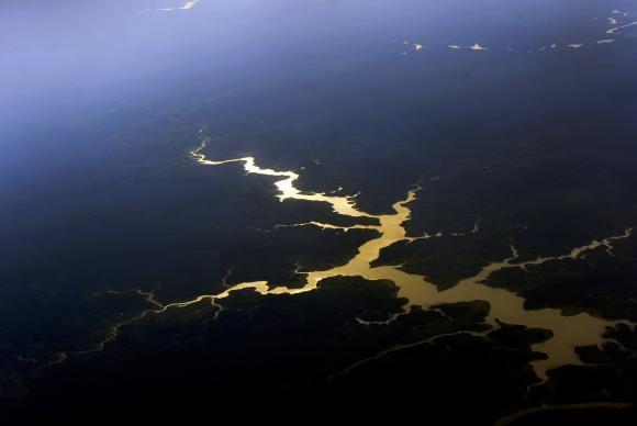 Vista aérea de floresta e rios