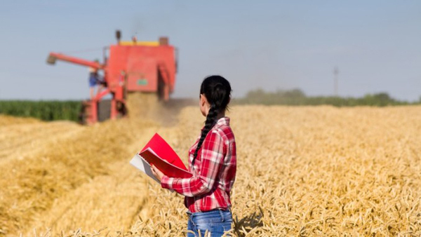 A presença da mulher em funções de decisão nos empreendimentos rurais apresentou salto impressionante nos últimos quatro anos, triplicando sua importância na gestão da atividade rural de 10% para 31%
