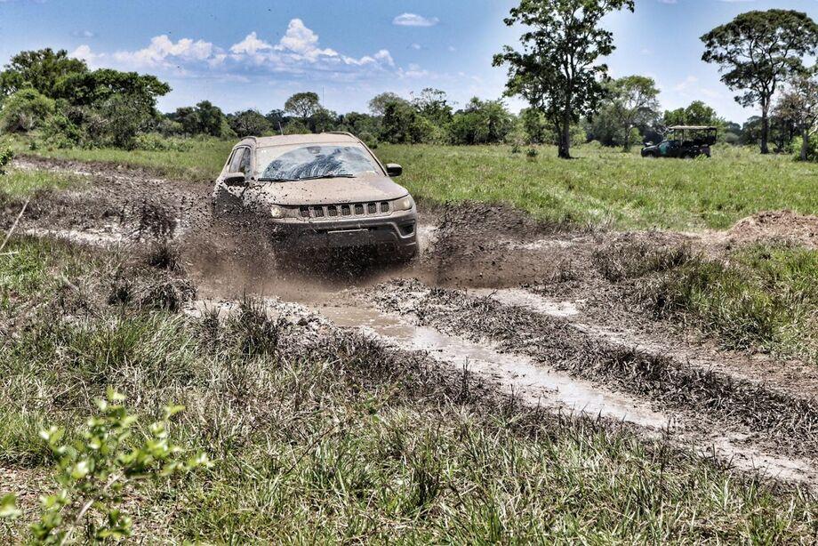 As características de um Jeep combinam com a natureza pantaneira