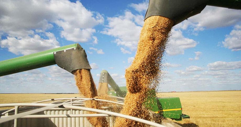 MS deve superar os 10 milhões de toneladas de soja