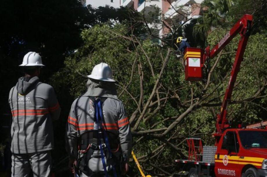 Ciclone deixou rastro de destruição em Santa Catarina