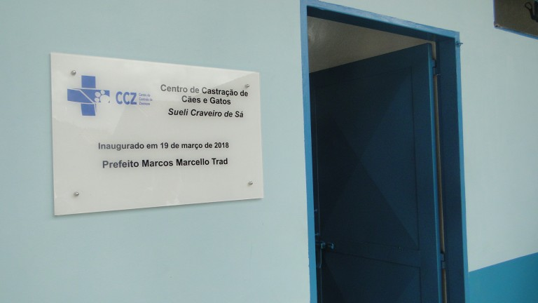 O agendamento online para castração de felinos no Centro de Controle de Zoonoses (CCZ) será retomado de forma gradativa no dia 20 deste mês