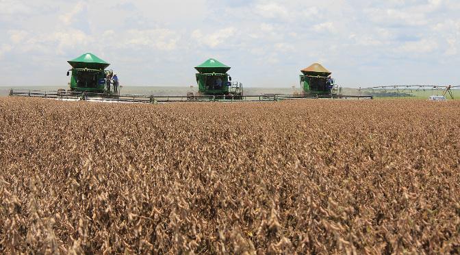 O plano prevê aos pequenos agricultores rurais recursos para financiamento em atividades agropecuárias