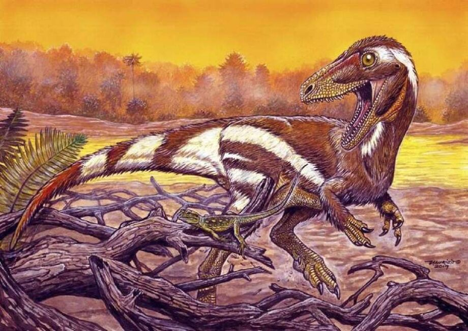 O novo dino é o Aratasaurus museunacionali - uma combinação de ara e ata, que na língua tupi significam nascido e fogo; com sauros, o sufixo grego para designar os lagartos.
