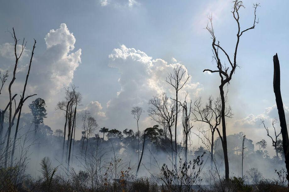 O maior risco está no sul no Pará, norte de Mato Grosso e Rondônia, justamente os locais que mais desmataram desde o ano passado.