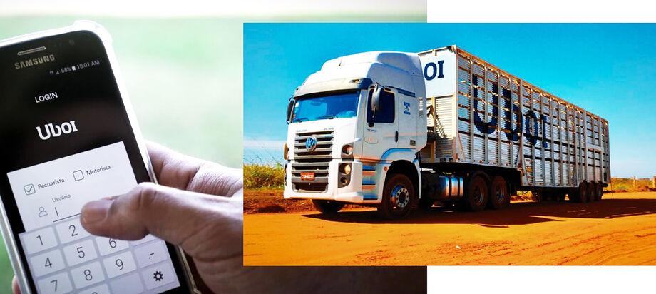 Aplicativo vai ajudar no transporte de animais