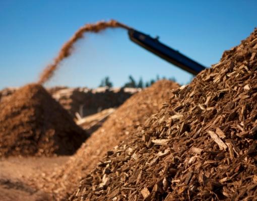 Biomassa vira energia nas usinas