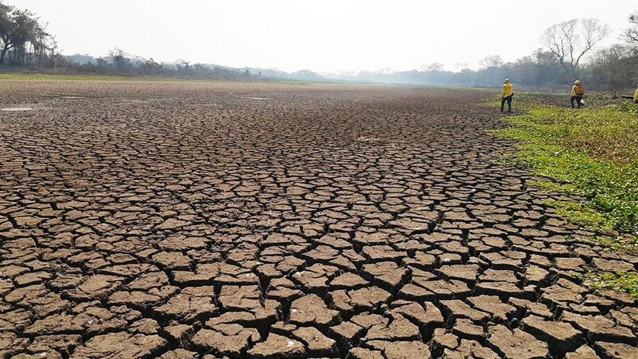 Com as queimadas, o Pantanal demonstra sinais do clima seco