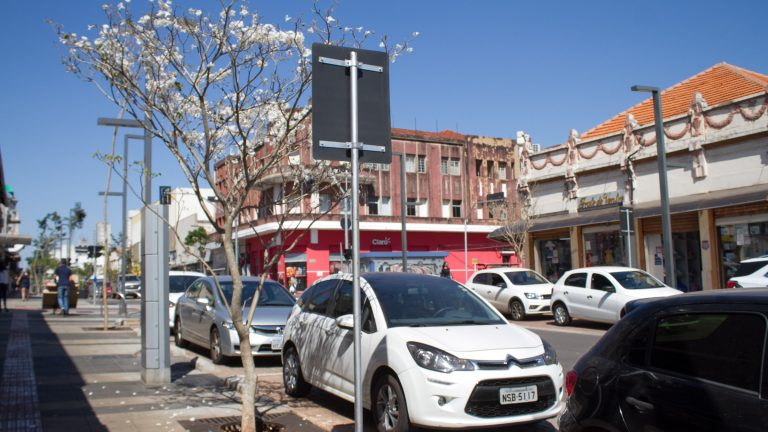 No cenário empoeirado e de tempo seco, uma pequena árvore com flores brancas se destaca na principal rua de comércio da cidade