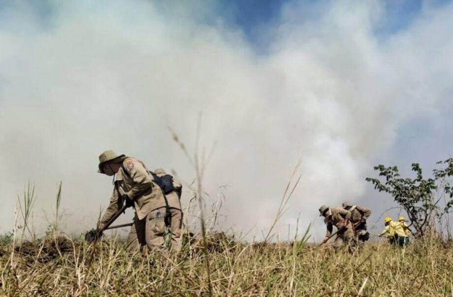 Bombeiros tentam apagar focos de incêndio no Pantanal.