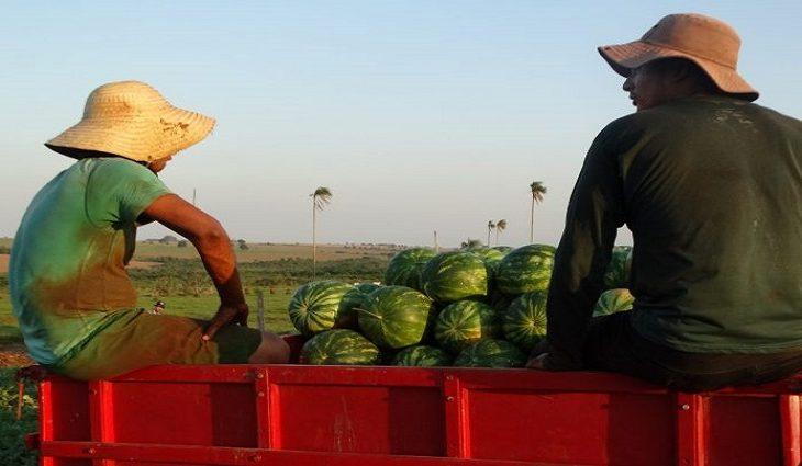 A agricultura familiar em MS vai ganhar reforço a com a entrega de caminhões caçamba para mais 10 municípios.