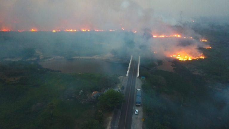 Mato Grosso do Sul registrou situação crítica em relação aos incêndios florestais na região pantaneira