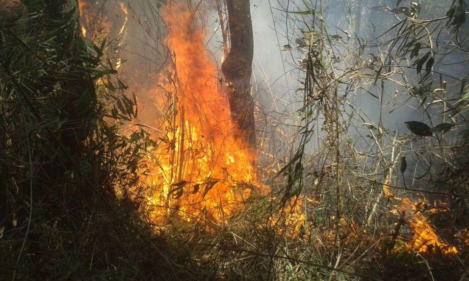 O Corpo de Bombeiros do Rio de Janeiro combate há dois dias um incêndio florestal de grandes proporções no Parque Nacional da Serra dos Órgãos (Parnaso)