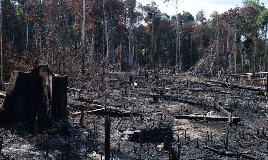 No período de agosto de 2018 a julho de 2019, o Prodes apontou que a Amazônia perdeu 10.129 km²