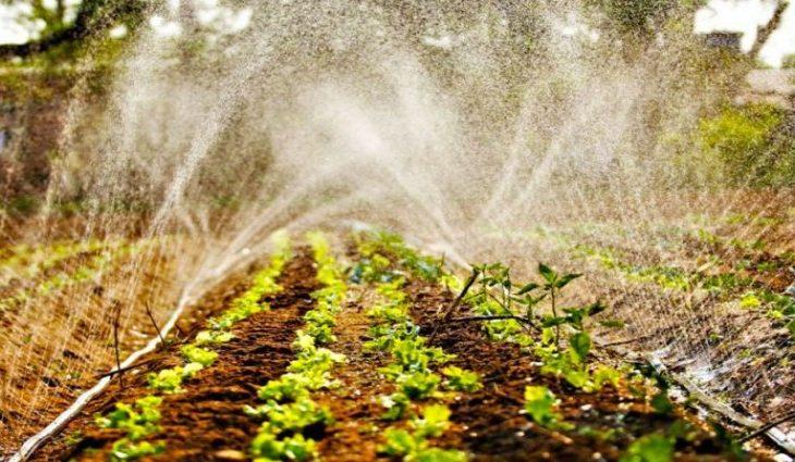Balanço da Agraer indica que desde o lançamento do projeto já foram distribuídas 34,0 toneladas de composto orgânico