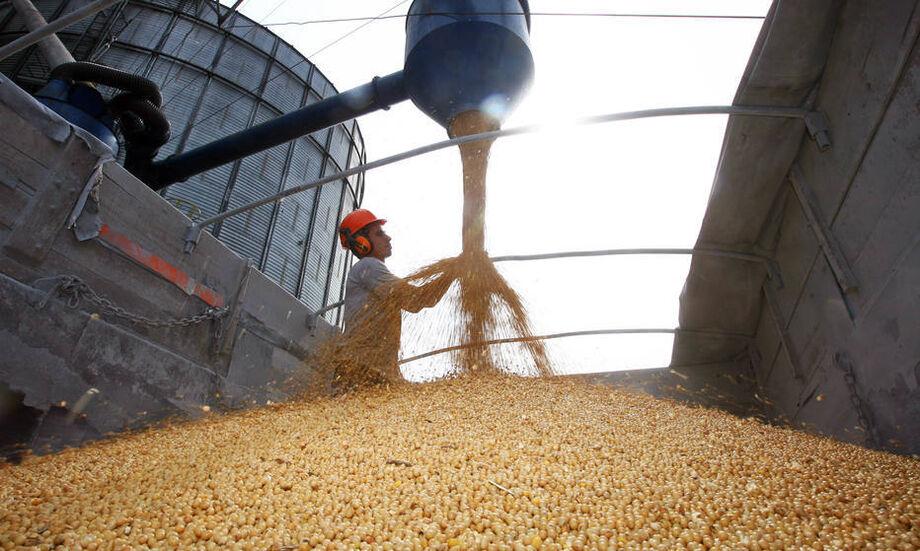 Exportações de soja crescem e somam 36% da balança comercial do Estado