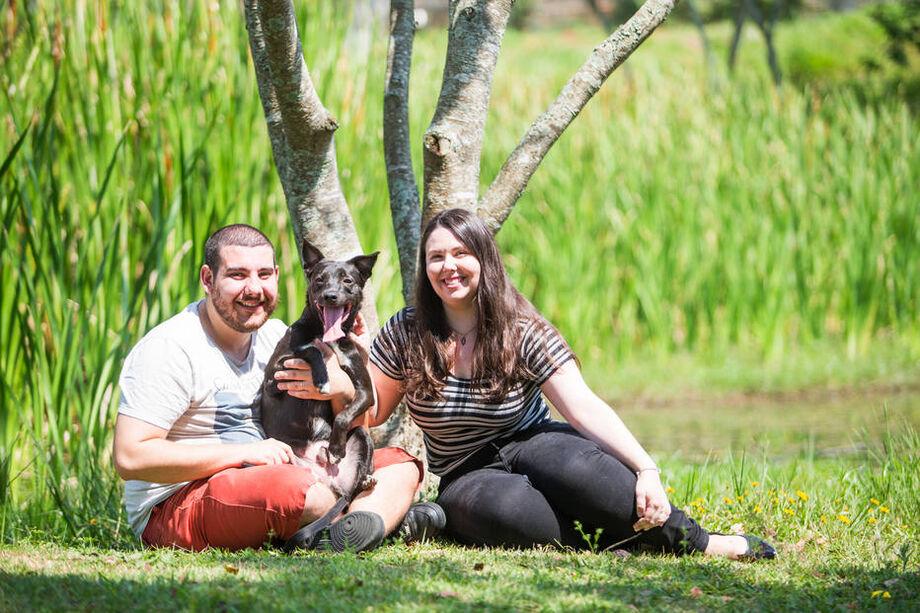 Muitas ONGs e grupos que acolhem cães e gatos abandonados fazem o acompanhamento pós-adoção para verificar a adaptação do animal com a nova família