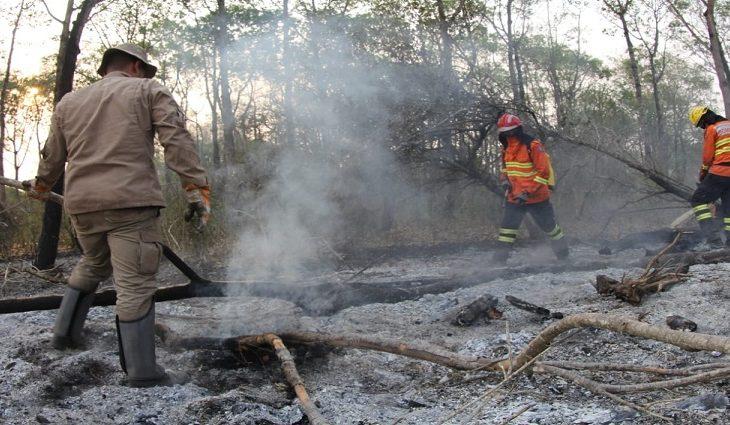 O fogo no Parque Estadual das Nascentes do Rio Taquari já foi controlado e o número de focos de calor no Pantanal sul-mato-grossense já foi reduzido