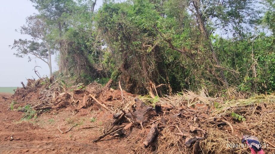 Agentes da Polícia Militar Ambiental autuaram o proprietário de uma fazenda por desmatamento sem autorização ambiental em Amambaí