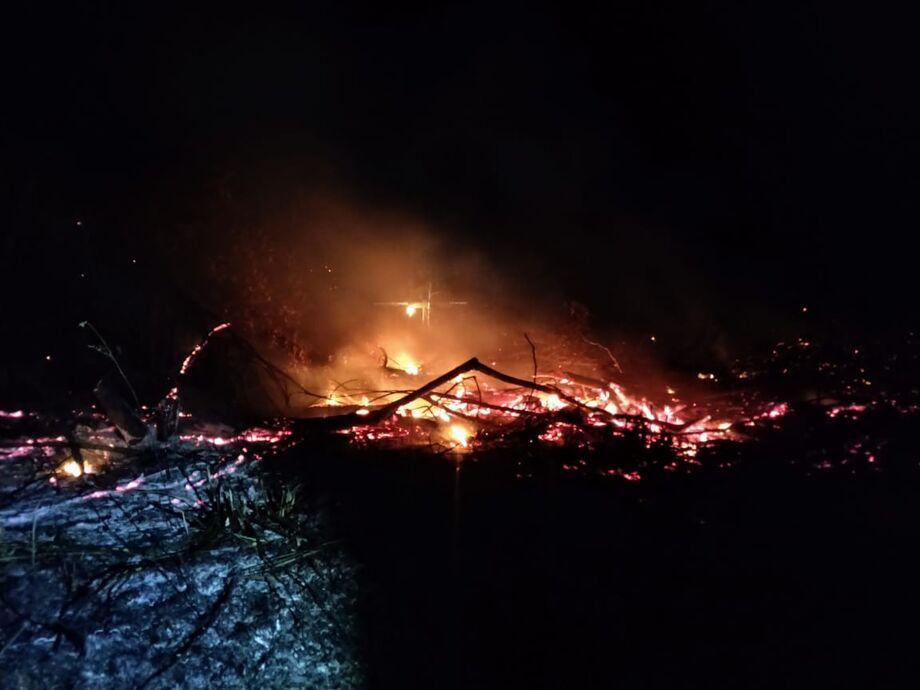 A área que tinha sido queimada tem a medição de1 hectare.