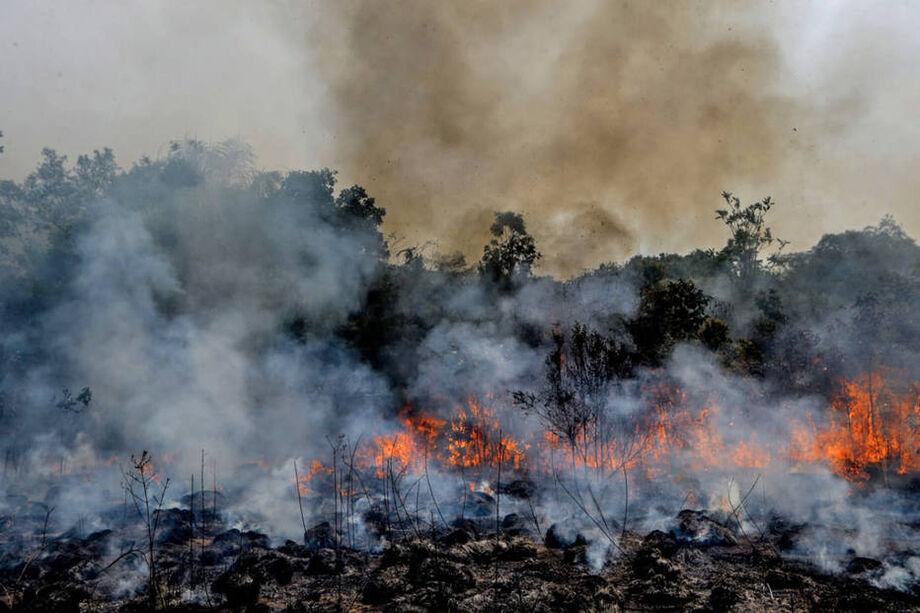 Fogo invade e consome a floresta em Apui, sul do estado do Amazonas, em agosto de 2019