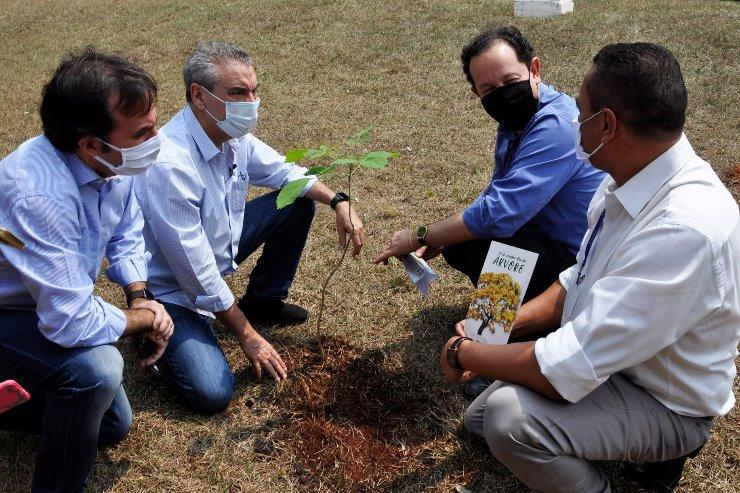 Presidentes da ALEMS e da Sanesul plantaram muda de Ipê Amarelo nos jardins da Casa de Leis