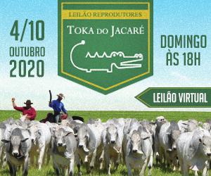 TOKA DO JACARE -