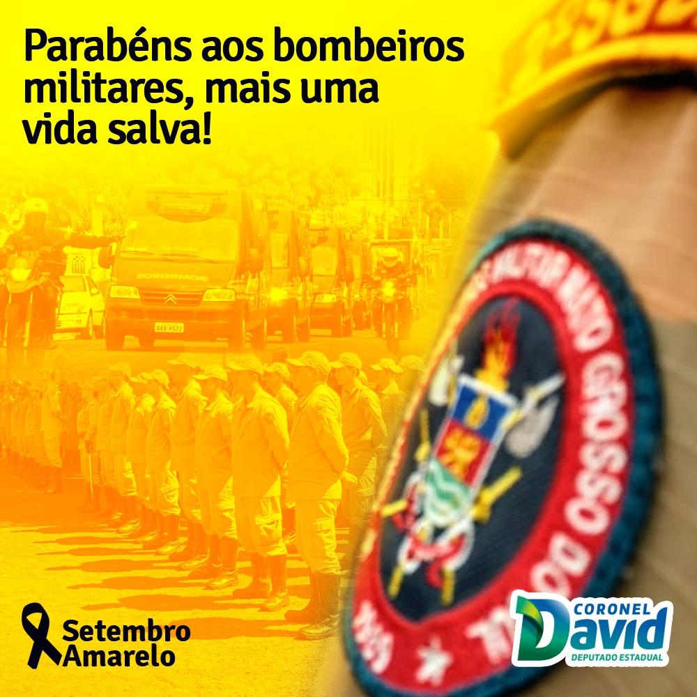 Coronel David